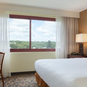 Embassy Suites Waltham King