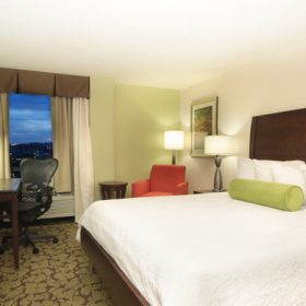 Hilton Garden Inn Pittsburgh King
